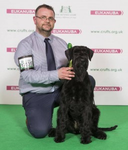 Kirk and Purdey Crufts 2017