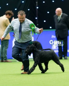 Purdey Crufts Working Group