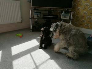 Ernie+Boris